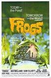 Frogs - Today the pond!