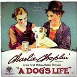 Dog's Life  a