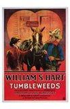 Tumbleweeds The Film