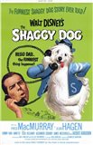 Shaggy Dog Disney Movie