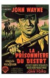 The Searchers (spanish)