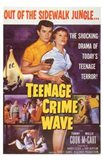 Teenage Crime Wave