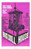 Big Dollhouse