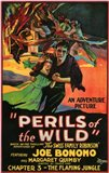 Perils of the Wild