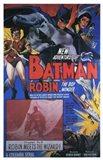 Batman and Robin - Robin Meets the Wizard