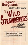 Wild Strawberries - vertical