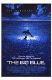 The Big Blue - Dolphin