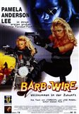 Barb Wire - German - style A