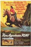 Run Appaloosa Run
