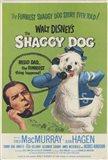 Shaggy Dog Disney Movie