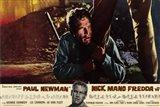 Cool Hand Luke Paul Newman Nick Mano Fredda