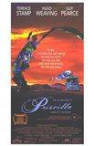 Adventures of Priscilla  Movie Poster