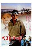 The Karate Kid Chinese