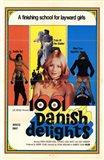 1001 Danish Delights