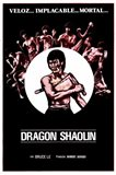 Dragon Shaolin