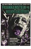 Evil of Frankenstein