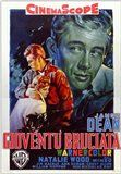 Rebel Without a Cause Film Poster Italian