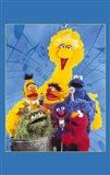 Sesame Street(Tv)