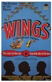 Wings - The war in the air from both sides of the lines