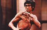 Enter the Dragon Karate Action