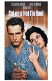Cat on a Hot Tin Roof Taylor & Newman
