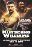 Vitali Klitschko vs Danny Williams