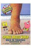 Spongebob Squarepants Sponge Meets World
