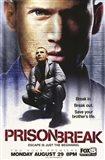 Prison Break (TV) Dominic Purcell as Lincoln Burrows