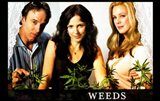 Weeds (TV) Nancy Doug Isabelle