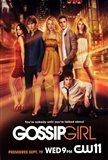 Gossip Girl Entire Cast Poster