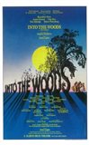 Into the Woods (Broadway)