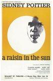 A Raisin In The Sun (Broadway)