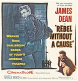 Rebel Without a Cause The Star Sensation