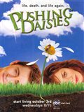 Pushing Daisies Life. Death. And Life Again