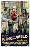 King of the Wild - Chapter 9
