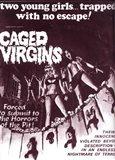 Vierges et vampires movie poster