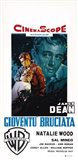 Rebel Without a Cause Natalie Wood Italian