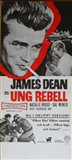 Rebel Without a Cause Black and White