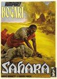 Sahara Bogart