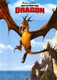 How to Train Your Dragon - style D