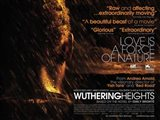 Wuthering Heights - Love is a force of nature