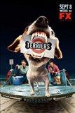 Terriers (TV)
