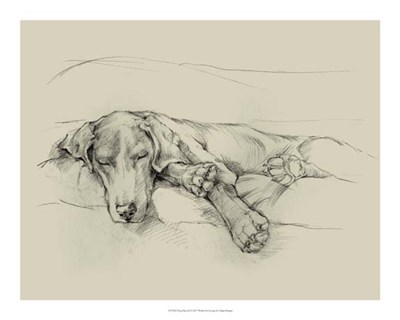 Dog Days II Poster by Ethan Harper for $37.50 CAD