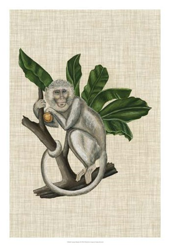 Canopy Monkey II Poster by Naomi McCavitt for $56.25 CAD
