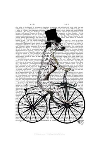 Dalmatian on Bicycle Poster by Fab Funky for $20.00 CAD