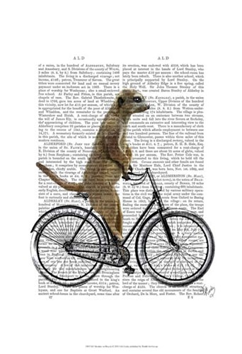 Meerkat on Bicycle Poster by Fab Funky for $20.00 CAD