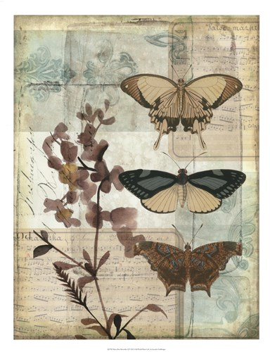 Music Box Butterflies II Poster by Jennifer Goldberger for $62.50 CAD