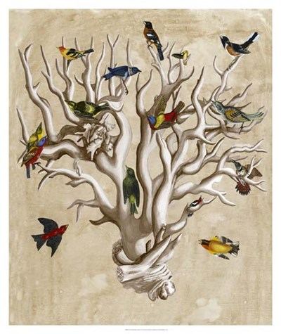 The Ornithologist's Dream I Poster by Naomi McCavitt for $162.50 CAD