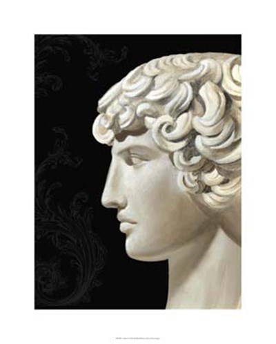 Adonis Poster by Ethan Harper for $131.25 CAD
