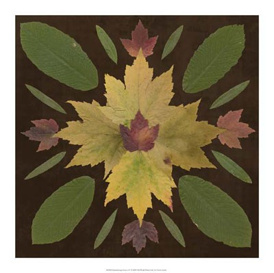 Kaleidoscope Leaves IV Poster by Vision Studio for $37.50 CAD
